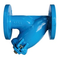 TH020-Flanged Y Strainer